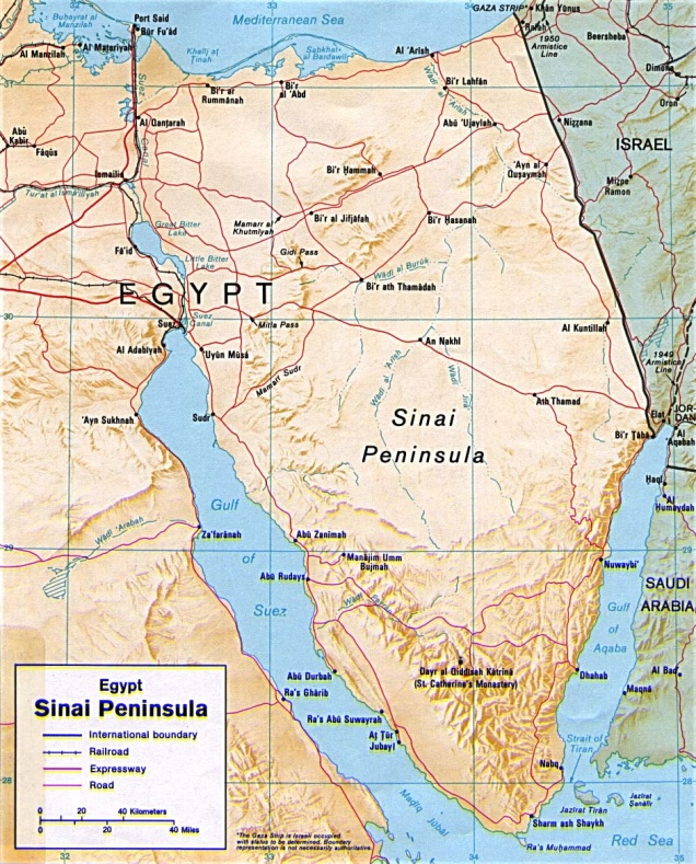 Article 11 (1) Sinai
