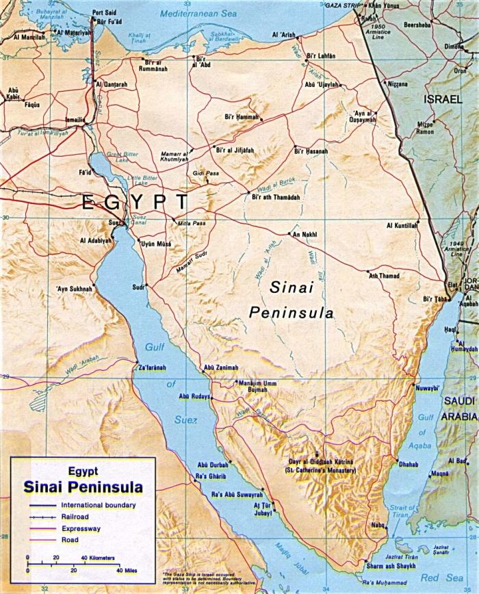 Article 11 (1) Sinai